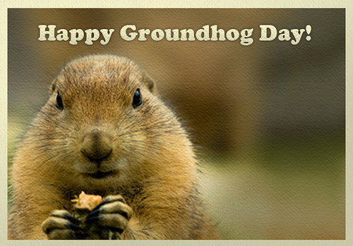 http://burnsnight2016.blogspot.in/2016/01/histor-groundhog-day-2016.html