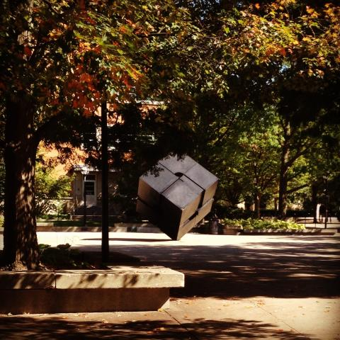 The Cube in the Fall