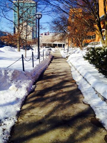 Path on campus during winter