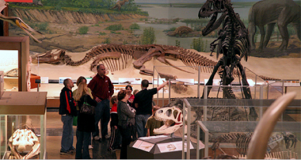 A group of children and an adult at a museum, appearing on a tour. There are two full skeletons of dinosaurs and other skeletons on display.