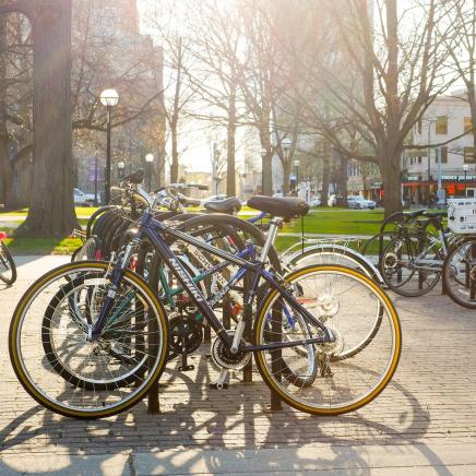 Photo of bicycles on bike rack on campus with trees and sunny sky in the background.